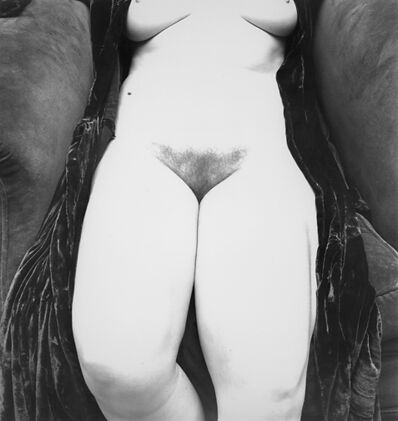 Irving Penn, 'Nude 119, New York'