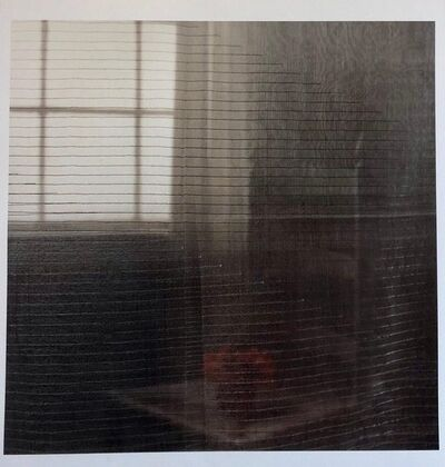Peter C. Jones, 'Gray Afternoon, Large Format Flower Photo 24X20 Color Photograph Beach House', 2000-2009