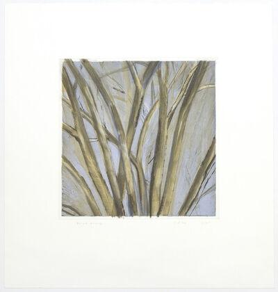 Sylvia Plimack Mangold, 'Winter Elm', 1995