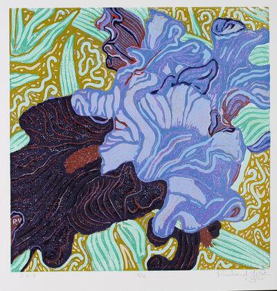 Richard York, 'Iris', 2015