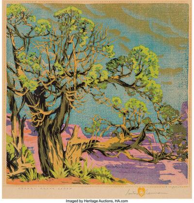 Gustave Baumann, 'Cedar - Grand Canyon'