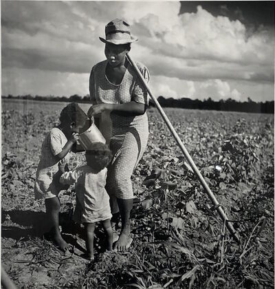 Marion Post Wolcott, 'Taking a drink and resting from hoeing cotton, Allen Plantation, an FSA project. Natchitoches, Louisiana', 1941