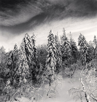 Michael Kenna, 'Snow Clad Trees, Heilongjiang, China', 2012