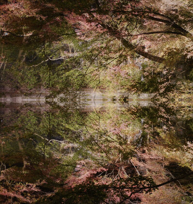 Ori Gersht, 'Floating World, Lost World 01', 2016