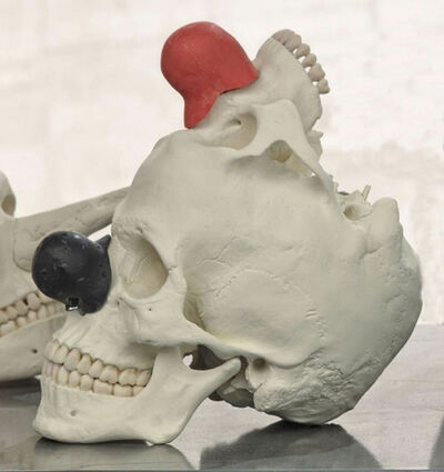Bene Bergado, 'Cráneo de Homo Ridensis', 2016