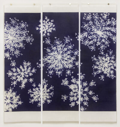 Jeri Eisenberg, 'Traces (After Anna) Queen Anne's Lace Triptych', 2013