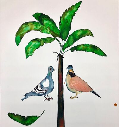 Johanna Breiding, ' Interrupted Vision: Pigeon/Dove', 2019