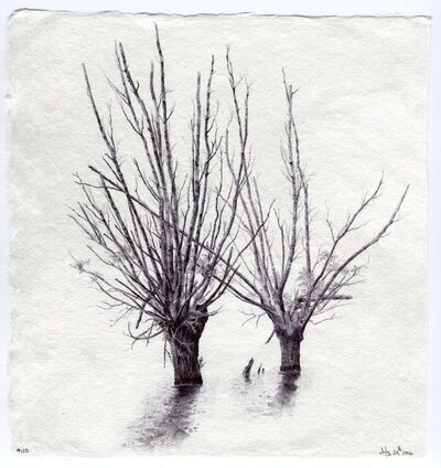 Dina Brodsky, 'Tree No. 120, July 30, 2016', 2016