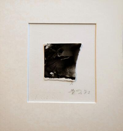 Eikoh Hosoe, 'Fragmentary Photograph', 1982