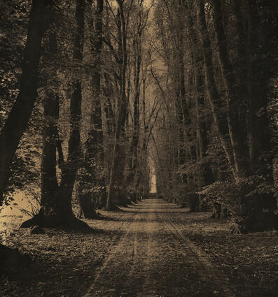 Laure Albin-Guillot, 'Road through the Woods', 1938/1938