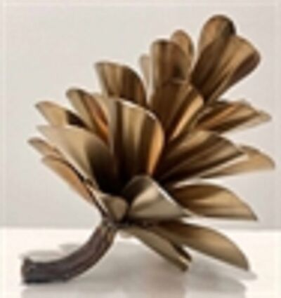 Floyd Elzinga, 'Pine Cone', 2020