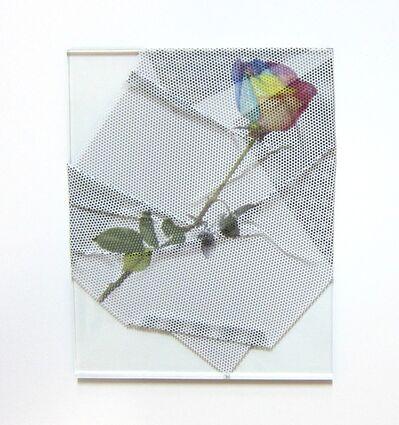 Virginia Poundstone, 'Rainbow Rose', 2013