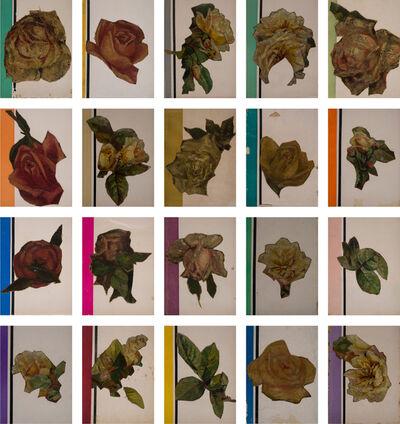 Jose Luis Landet, 'Flores Amateur', 2015