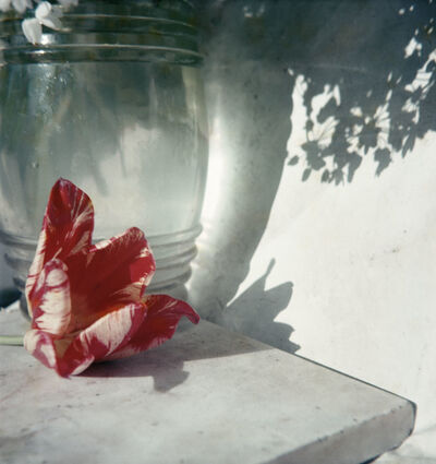 Jacques Henri Lartigue, 'Opio', 1963