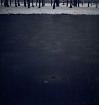 Ori Gersht, 'Pond'
