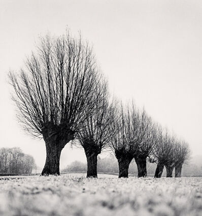 Michael Kenna, 'Seven Pollarded Trees, Capaize, Bourgogne, France', 1998