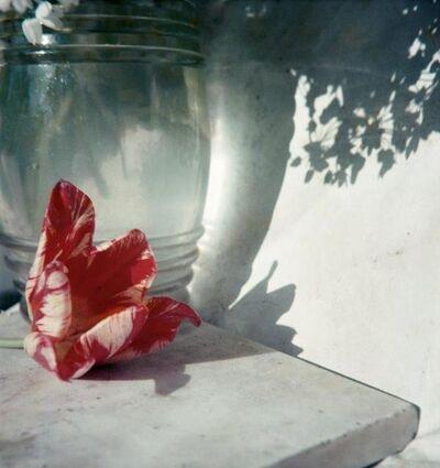 Jacques Henri Lartigue, 'Opio', 1963