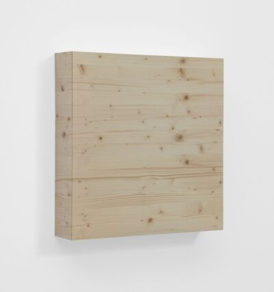 Elisa Sighicelli, 'Untitled (Wood)', 2012
