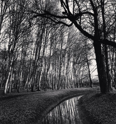 Michael Kenna, 'Forest and Stream, Château d'Haroué, Lorraine, France', 2013