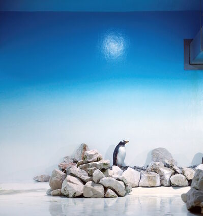 Eric Pillot, 'Blue Penguin', 2013
