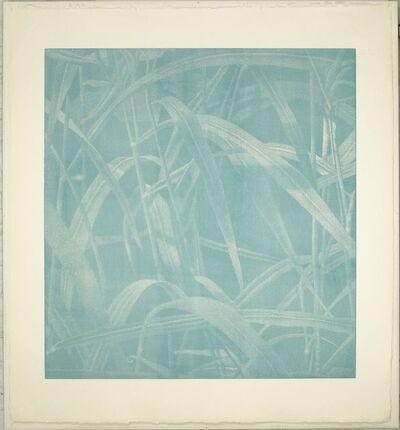 Franz Gertsch, 'Gräser I', 2000