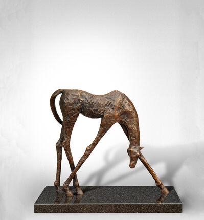 jd Hansen, 'Horse'