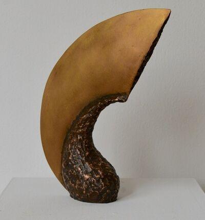 David Cerulli, 'Gourd Blade', 2016