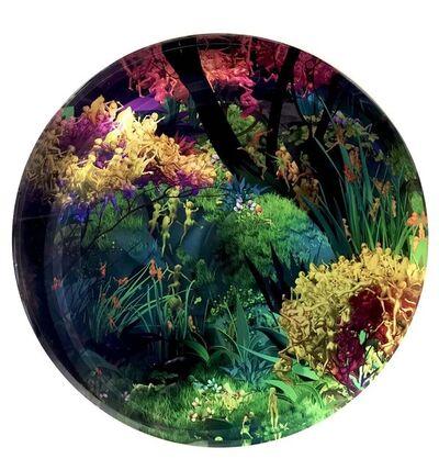 Jessica Lichtenstein, 'Forest, 1/50', 2019