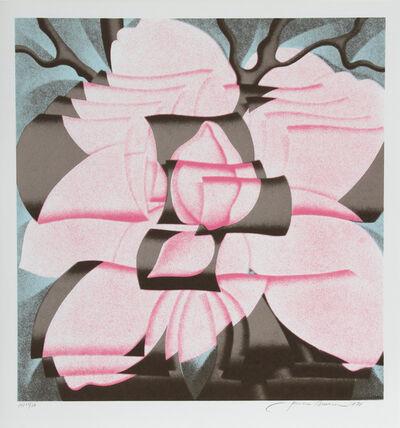 Jack Brusca, 'Magnolia ', 1978