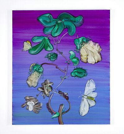 Mimei Thompson, 'Metapmorphosis: Cotton Bush  ', 2019