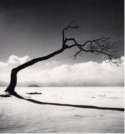 Michael Kenna, 'Kussharo Lake Tree, Study 10, Kotan, Hokkaido, Japan', 2005