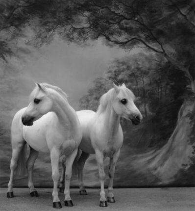 Sheila Rock, 'Horse #57'