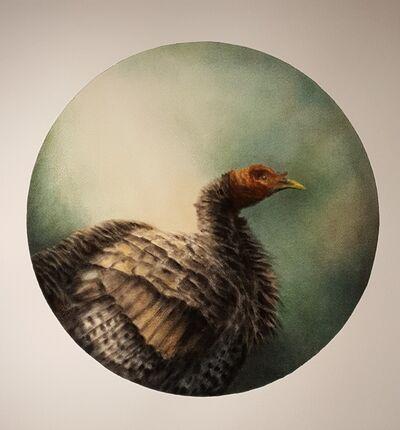 Randall Finnerty, 'Wild Turkey', 2018