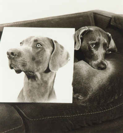 William Wegman, 'Double Portrait (From Man Ray: A portfolio of 10 Photographs)', 1982