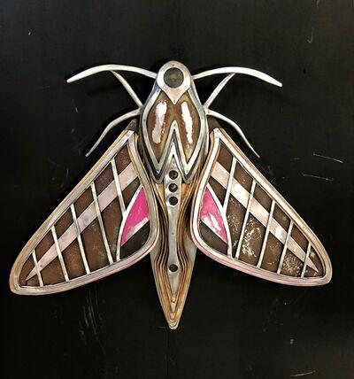 Bates Wilson, 'Tiger Moth', 2019