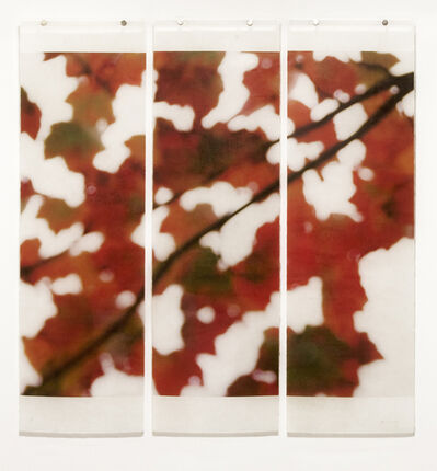 Jeri Eisenberg, 'Autumn Splash', 2014