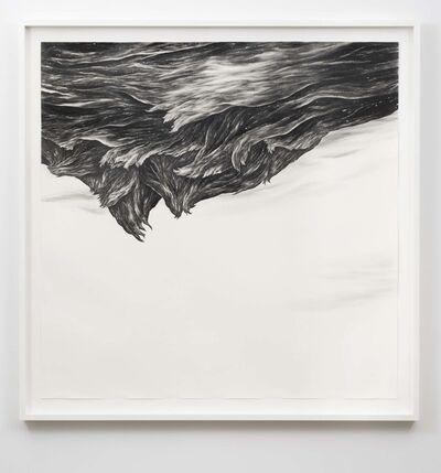 Robyn O'Neil, 'Hurricane', 2009