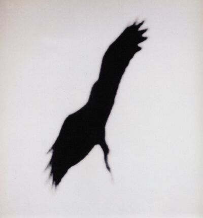 Michal Rovner, 'While in the Air III, 1999, Archival pigment print on canvas, 123X123 cm.', 1999
