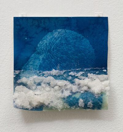 Andrea Chung, 'Mushroom Coral', 2019