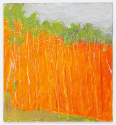 Wolf Kahn, 'Bold Color', 2011