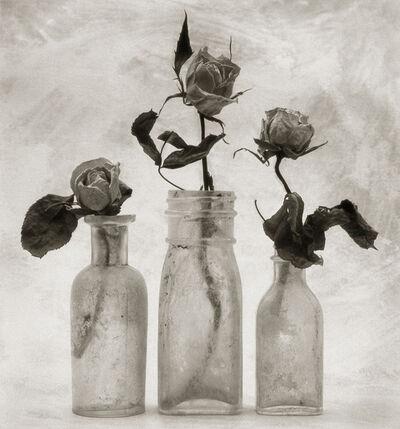 Cy DeCosse, 'Three Roses'