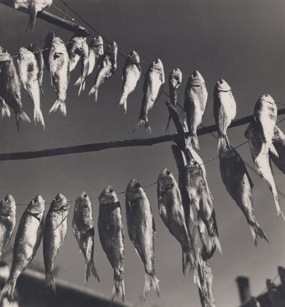 Elisabeth Hase, 'Getrocknete Fische (dried fish)', 1957