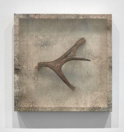Sonya Kelliher-Combs, 'Remnant (Moose Antler III)', 2019