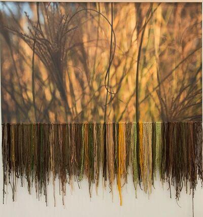 Leda Black, 'Fall'