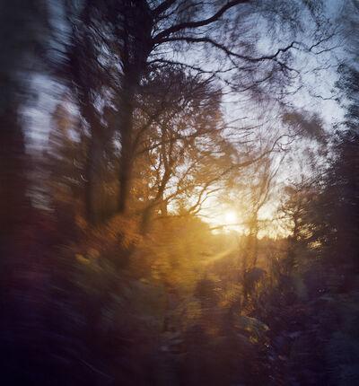 Dominic Pote, 'Cannock Dawn', 2014
