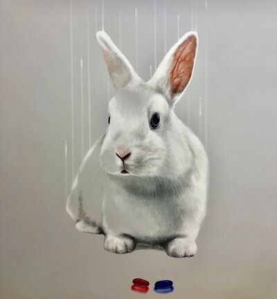 Louise McNaught, 'Down the Rabbit Hole', 2019