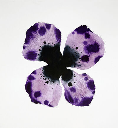Stephen Doherty, 'Purple Flower', 2018