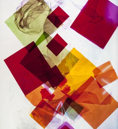 Lorenza Panero, 'Eco Inevitable', 2016