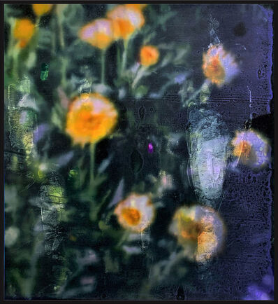 Wendelin Wohlgemuth, 'Dandelions', 2020