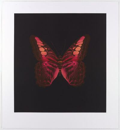 Damien Hirst, 'Memento (01 - Large Red Butterfly)', 2007